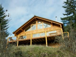 Elk Ridge Cabin HotTub.Wifi.Satellite.3Bdrm.2Bath - Packwood vacation rentals
