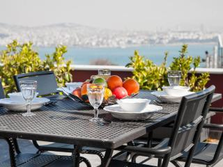 3BR★2BA★PENTHOUSE★PRIVATE TERRACE★SEA VIEW★GALATA! - Istanbul vacation rentals