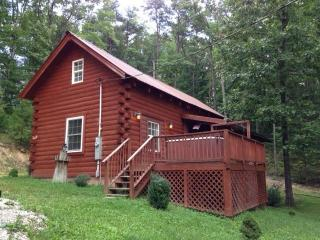 Turkey Cove Cabin - Kentucky vacation rentals
