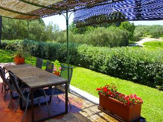 Lovely apartment in agriturismo with pool - Meina vacation rentals