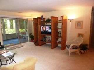 23L,seapines,walk beach,WIFI,tennis,golf disc,bikes - Sea Pines vacation rentals