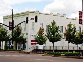 Downtown Starkville Penthouse - Mississippi vacation rentals