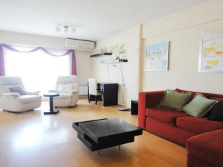 Very bright and spacious apartment. Balcony. - Buenos Aires vacation rentals