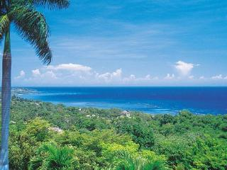 VL BLU - Montego Bay vacation rentals