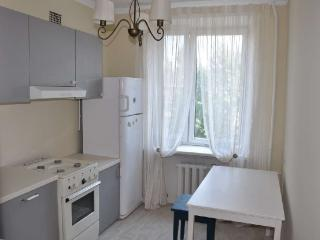 Nice flat in the center - Central Russia vacation rentals