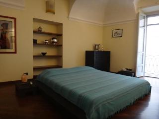 Nice apartment in the Historic Hearth of Asti - Asti vacation rentals