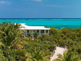 Reef Beach House on world famous Grace Bay Beach! Privacy, charm & character. - Providenciales vacation rentals