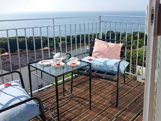 ROOM@THETOP, WiFi, beautiful sea views, romantic, luxury cottage in Ventnor, Ref. 29353 - Isle of Wight vacation rentals