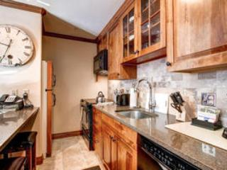 Lion Square Lodge 1BR/2BA Mountain View Deluxe - Image 1 - Vail - rentals