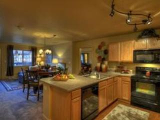 First Tracks 2BR/2BA - Image 1 - Steamboat Springs - rentals