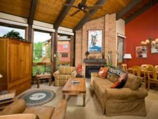 The Lodge 2BR/2BA - Image 1 - Steamboat Springs - rentals