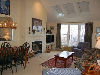 Winterplace 3 Bedroom Plus Loft - Ludlow-Okemo Ski Area vacation rentals
