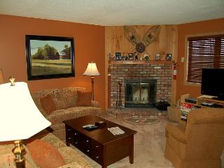 Kettle Brook 2 Bedroom Ski In/Out - Ludlow-Okemo Ski Area vacation rentals