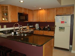 Winterplace 2 Bedroom Ski In/Out - Ludlow-Okemo Ski Area vacation rentals