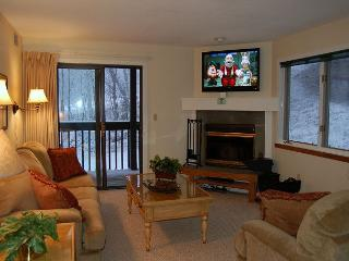 Okemo Mtn Lodge C Building End Unit - Ludlow-Okemo Ski Area vacation rentals