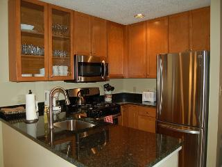 Winterplace Ground Floor 3 Bedroom Ski In/Out - Ludlow-Okemo Ski Area vacation rentals
