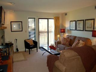 Okemo Mtn Lodge C Building - Ludlow-Okemo Ski Area vacation rentals
