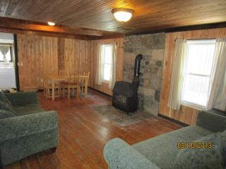 Cliffside Cabin near George Washington Forest - Harrisonburg vacation rentals