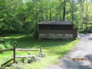 Lower Rawley Cabin - Rawley Springs - Harrisonburg vacation rentals