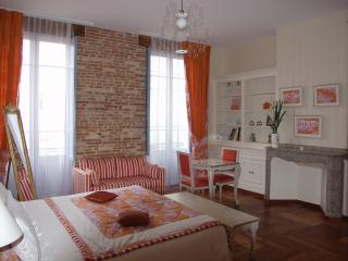 Luxurious  appartement in the heart of Toulouse, B&B possible - Toulouse vacation rentals