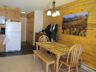 Beautiful Studio Apartment  in Grandby, Colorado - Cedaredge vacation rentals