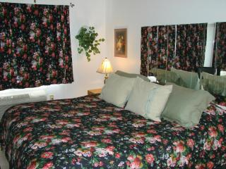 *PARADISE LAKES CLOTHING OPTIONAL CONDO FOR RENT* - Lutz vacation rentals