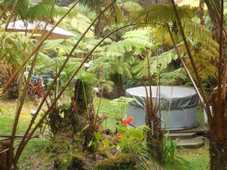 Romantic Cottage in the Rain Forest with Hot Tub Spa - Volcano vacation rentals