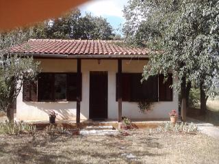 Small house in quet area, animals alowed -  garden - Umag vacation rentals