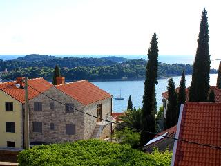 Holiday flat Vlaho near Cavtat - Dubrovnik vacation rentals