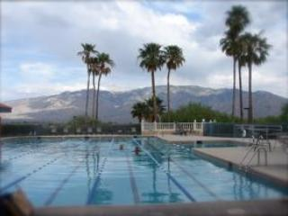 SPECTACULAR MOUNTAIN VIEWS  &  A RESORT LIFESTYLE! - Oro Valley vacation rentals