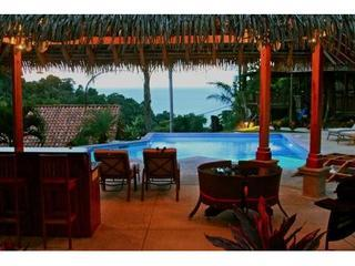 New Pool and Tiki Hut! Summer special $500 off any 7 nights May- August 2014 - Manuel Antonio vacation rentals