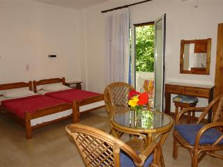 Near the Beach studio Mermaid for 2 to 4 persons. - Corfu vacation rentals