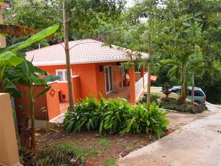 Hibiscus House HIBISCUS - West Bay vacation rentals