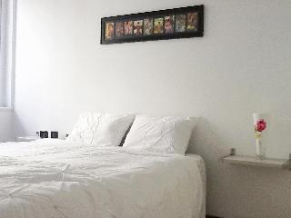Beautiful apartment in the city - Mendoza vacation rentals