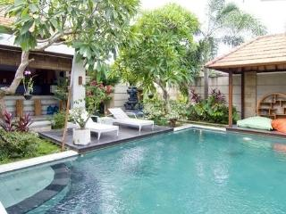 3 bedrooms Private Villa SeminyaK - Seminyak vacation rentals