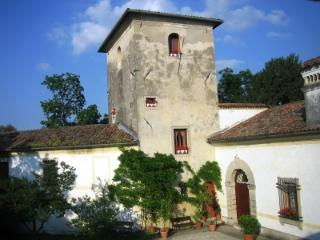The Tower in the Prosecco Hill Close to Venice! - Colle Umberto vacation rentals