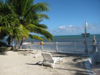 You Private Beach Paradise! - Long Key vacation rentals