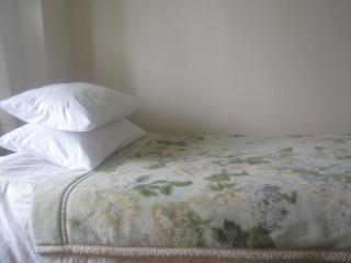 Sleeps 4 best price great location Shinjuku Tokyo - Shinjuku vacation rentals