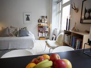 Cozy Copenhagen city apartment near Nordhavn station - Copenhagen vacation rentals