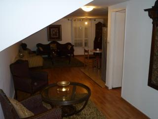 2 Bedroom Large Living Room And Full Kitchen - Jerusalem vacation rentals