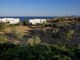 Aegean Naxos Waterfront Villa Theseus - Cyclades vacation rentals