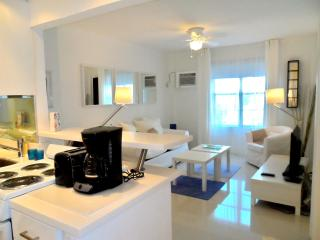 Amazing 1br brand new on collins ave, Miami Beach! - Miami Beach vacation rentals