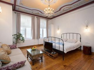 EVE - 1 Bed Apartment near GALATA! - Istanbul vacation rentals