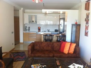 excellent apartment with swimming pool, good for couples and/or with 1 kid - Izmir vacation rentals