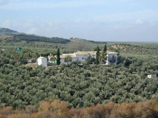 Casa rural La Cateta - Province of Jaen vacation rentals