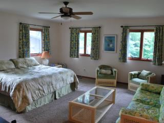 Huge Lakefront 4BR House with Private Dock - Coloma vacation rentals