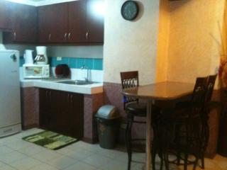 3Br Short Term Condo Rent @ Ortigas Business Cntr. - Pasig vacation rentals