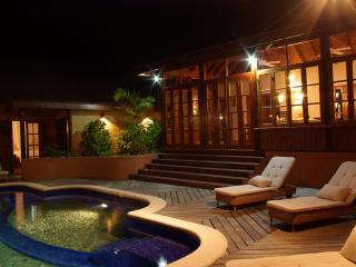 Tree Frog Villa - 5 bedroom Luxury Villa - Lance Aux Epines vacation rentals