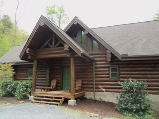 Norris Lake Cabin Rentals Heaven Sent with free Wi-fi private dock and hot tub - New Tazewell vacation rentals