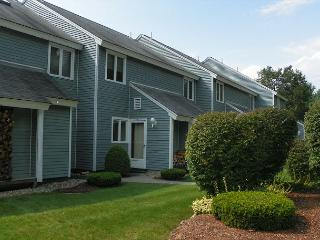 White Mountain Condo near several NH ski areas & attractions (BUE46M) - White Mountains vacation rentals